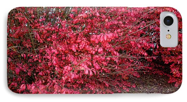 IPhone Case featuring the photograph Fire Bush by Pete Trenholm