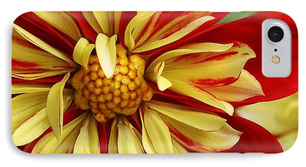 Fireworks IPhone Case by Bruce Bley
