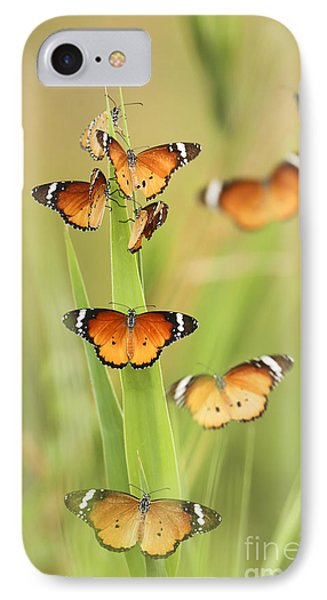 Flock Of Plain Tiger Danaus Chrysippus Phone Case by Alon Meir