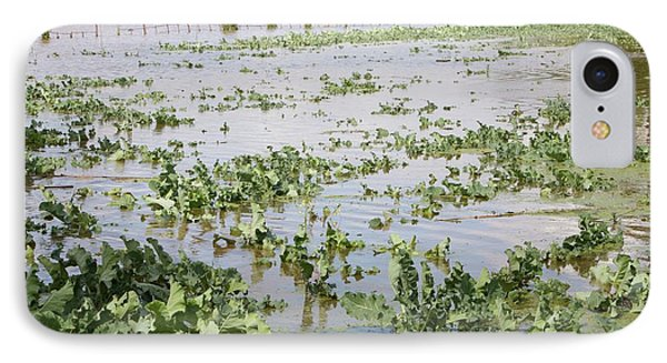 Flooded Crops IPhone Case