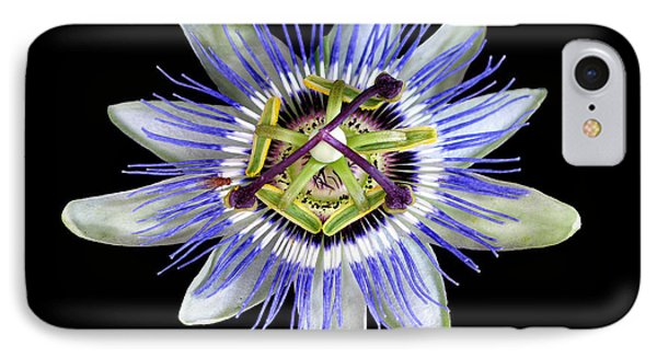 IPhone Case featuring the photograph Fly's Passion by Jennie Breeze