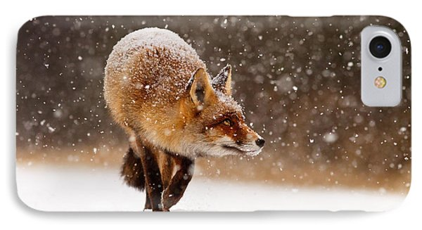 Fox First Snow IPhone Case by Roeselien Raimond