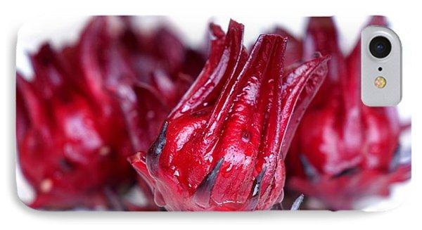 Fresh Rosella Fruit IPhone Case by Yali Shi
