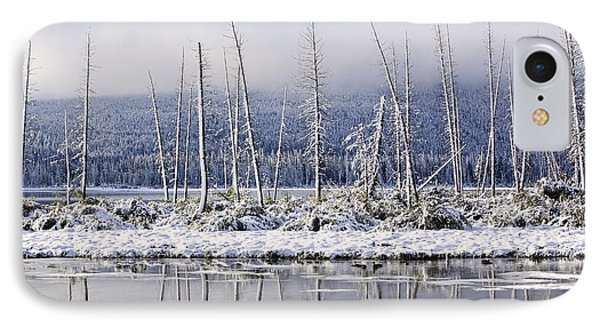 Fresh Snowfall And Bare Trees Phone Case by Ken Gillespie
