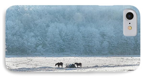 Frosty Morning Phone Case by Bill Wakeley