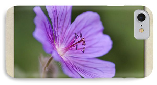 Geranium Maculatum Phone Case by John Edwards