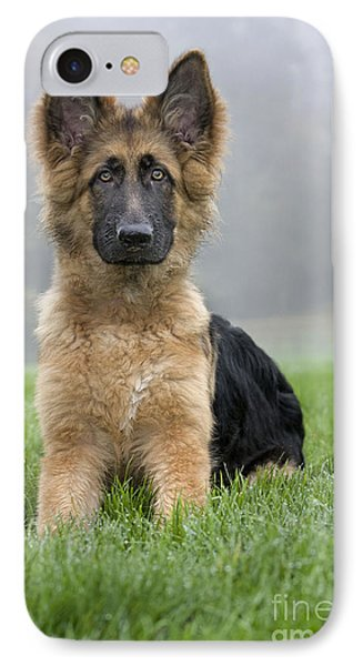 German Shepherd Puppy IPhone Case by Johan De Meester