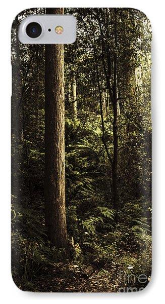 Glengarry Tasmania Bush Forest In Australia IPhone Case by Jorgo Photography - Wall Art Gallery
