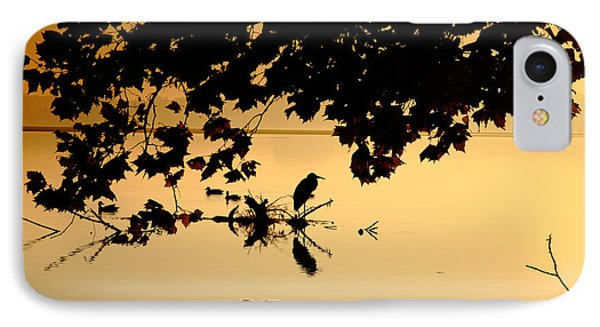 Golden Morning II IPhone Case by Steven Ainsworth