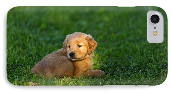 Golden Retriever Puppy Phone Case by Linda Freshwaters Arndt