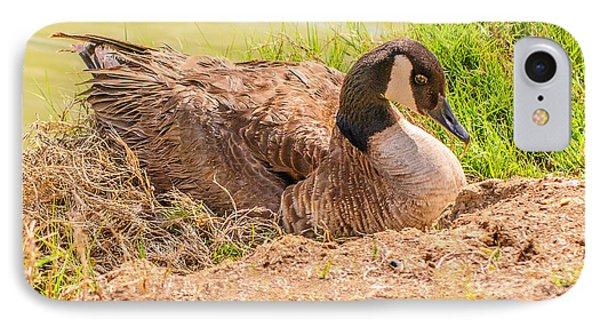 Goose Nesting Phone Case by Bob and Nadine Johnston