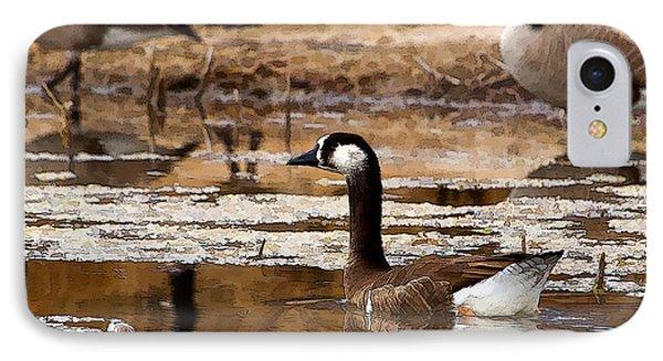 Goose Pond IPhone Case