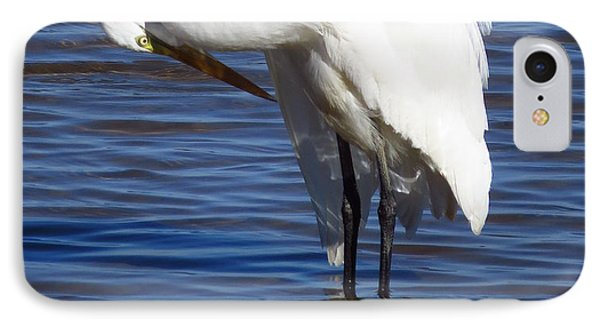 IPhone Case featuring the photograph Graceful by Phyllis Beiser