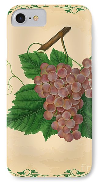 Grapes Illustration Phone Case by Indian Summer