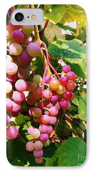 IPhone Case featuring the photograph Grapes by Rose Wang