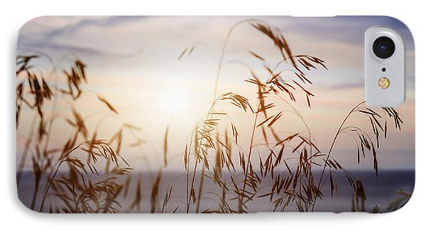 Grass At Sunset IPhone Case