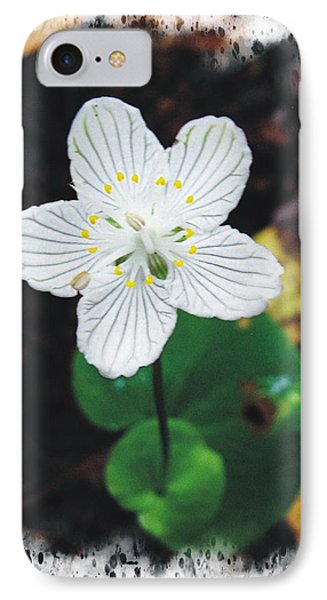 Grass Of Parnassus IPhone Case