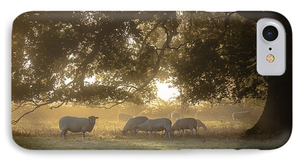 Grazing Under The Tree - Variation 1 IPhone Case by Chris Fletcher