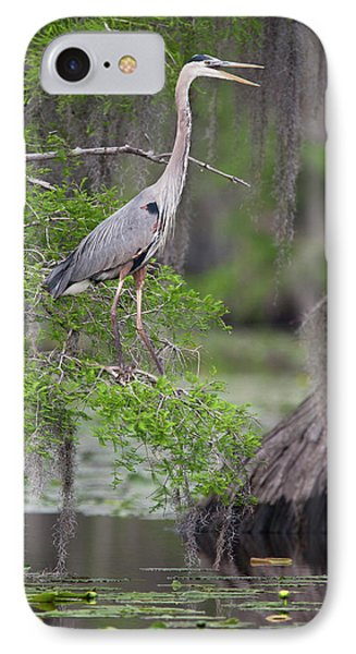 Great Blue Heron (ardea Herodias IPhone Case