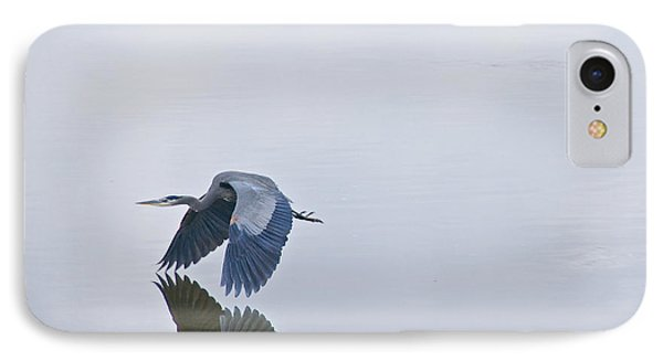 Great Blue Heron In Flight Photograph By Sean Griffin