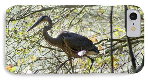 IPhone Case featuring the photograph Great Blue Heron In Bushes by Karen Silvestri
