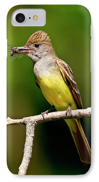 Great Crested Flycatcher Myiarchus IPhone 7 Case