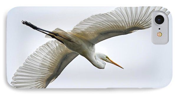 Great Egret IPhone Case by Brad Grove