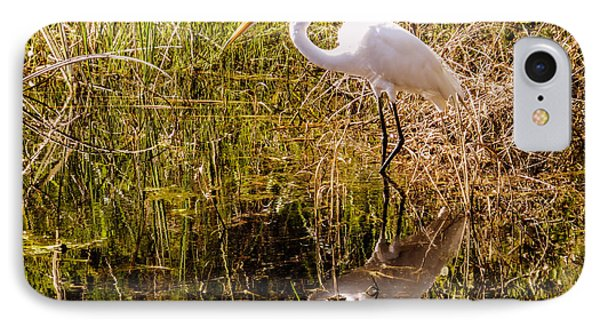 Great Egret  IPhone Case by Zina Stromberg