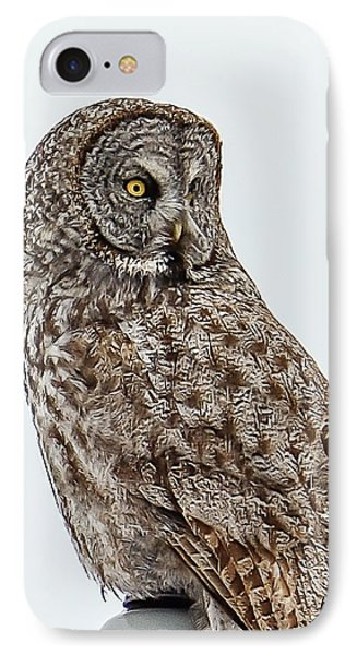 Great Grey IPhone Case