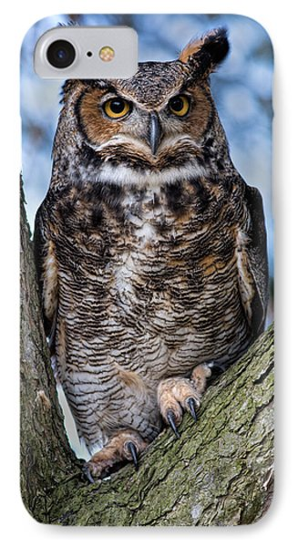 Great Horned Owl IPhone Case by Dale Kincaid