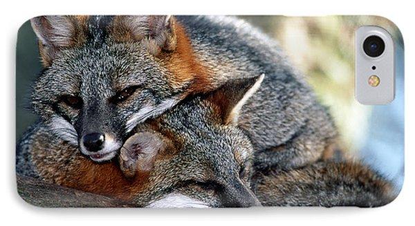 Grey Foxes Phone Case by Millard H. Sharp