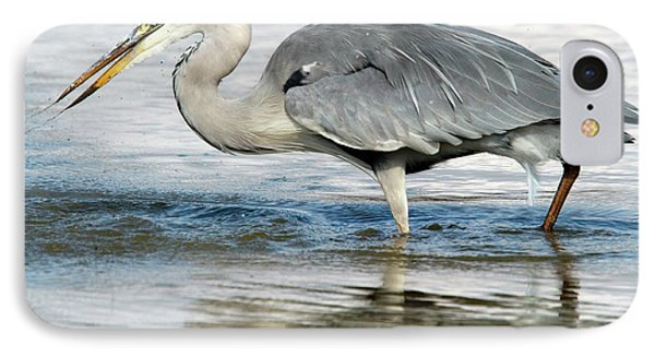 Grey Heron Catching A Fish IPhone Case by Bob Gibbons