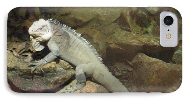Grey Iguana  Phone Case by Ann Fellows