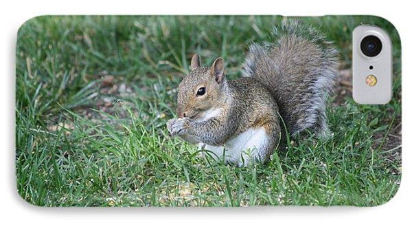 Grey Squirrel Phone Case by Lori Tordsen