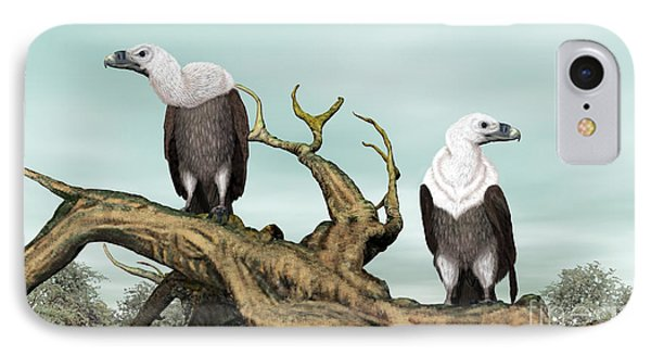 Griffon Vultures IPhone Case by Walter Colvin