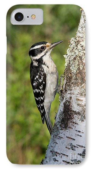 Hairy Woodpecker IPhone Case by Linda Freshwaters Arndt