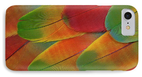 Harlequin Macaw Wing Feather Design IPhone Case by Darrell Gulin