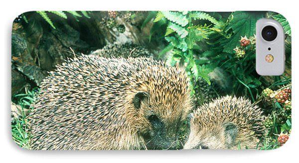 Hedgehog With Young Phone Case by Hans Reinhard
