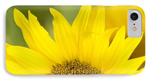 IPhone Case featuring the photograph Here Comes The Sun by Cathy Donohoue