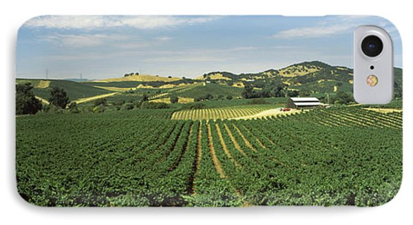 High Angle View Of A Vineyard, Carneros IPhone Case by Panoramic Images