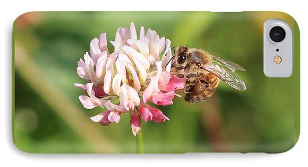 Honeybee On Clover IPhone Case by Lucinda VanVleck