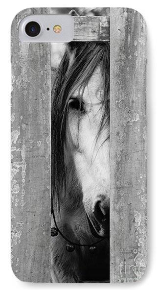 Horse Board 2 IPhone Case