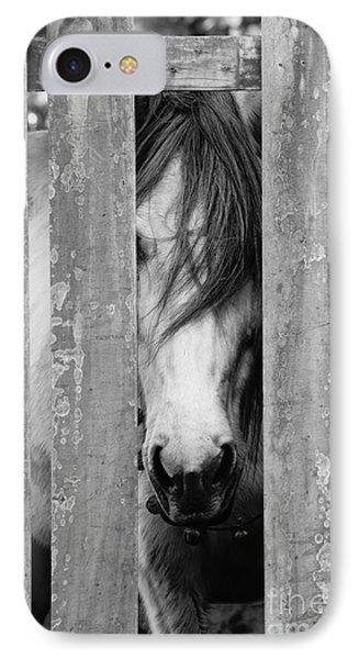 Horse Board IPhone Case
