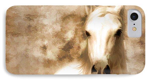 Horse Whisper Phone Case by Athena Mckinzie