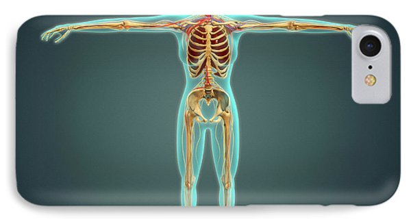 Human Body Showing Skeletal System Phone Case by Stocktrek Images
