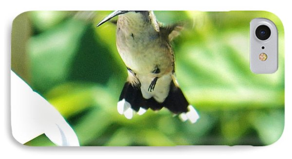 Hummingbird 1 2014 IPhone Case by Judy Via-Wolff