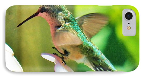 Hummingbird 3 2014 IPhone Case by Judy Via-Wolff