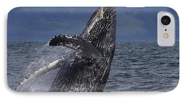 Humpback Whale Breaching Prince William IPhone 7 Case by Hiroya Minakuchi