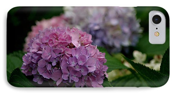Hydrangea IPhone Case by Living Color Photography Lorraine Lynch