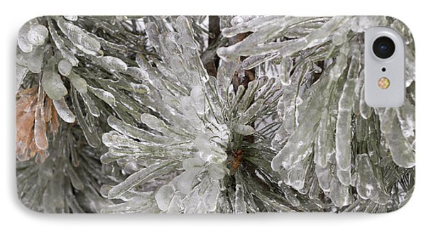 Ice On Pine Branches IPhone Case by Blink Images